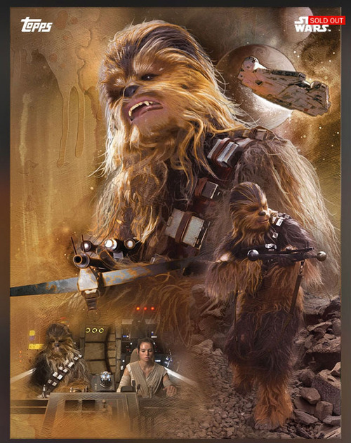 Star Wars Chewie+Rey+MF